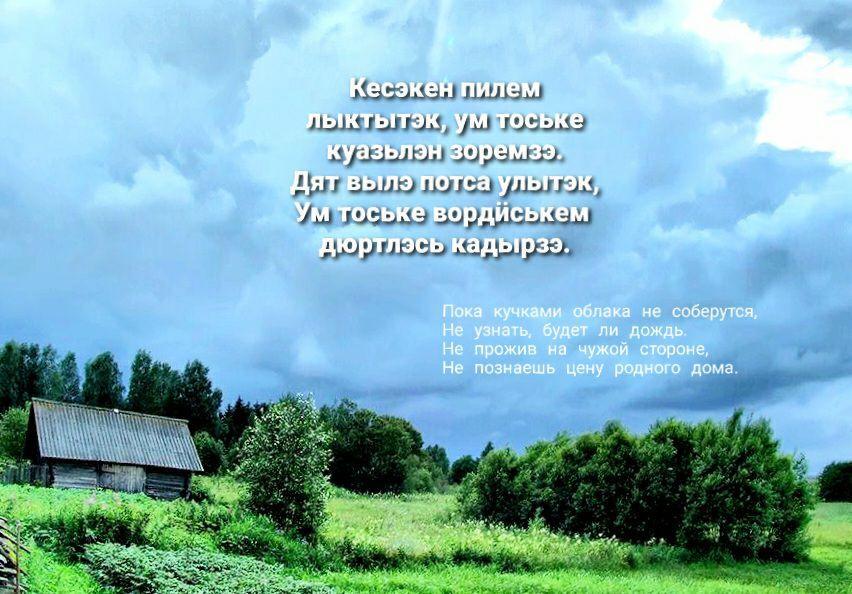 мудрость 16.06